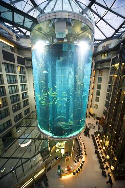центре Sea-Life