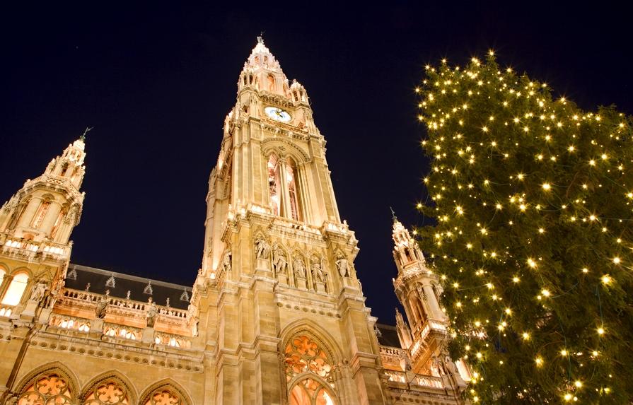 Рождественская ёлка в Вене